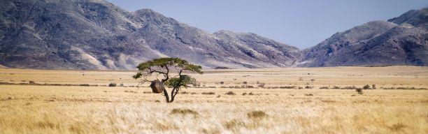 Wonderland Namibia